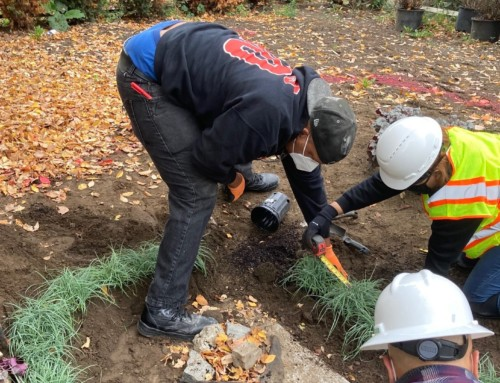 CSNDC Launches Green Infrastructure Training & Certification Program